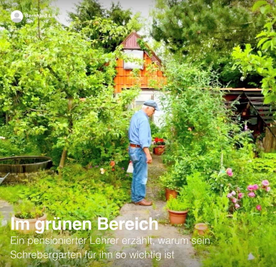 Bernhard Lill: Im grünen Bereich. Ein Schrebergärtner erzählt.